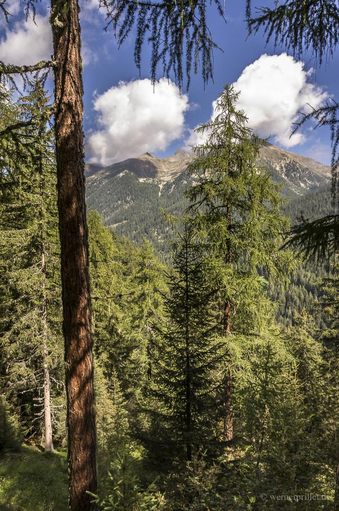 Südtirol-4.jpg