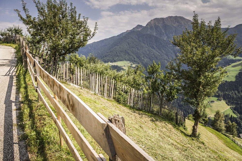Südtirol-20.jpg