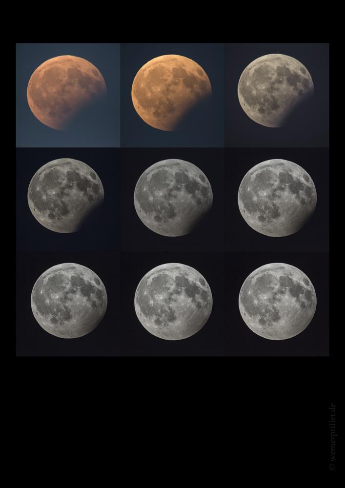 Part.MoFi.7.8.17.Collage-1.jpg