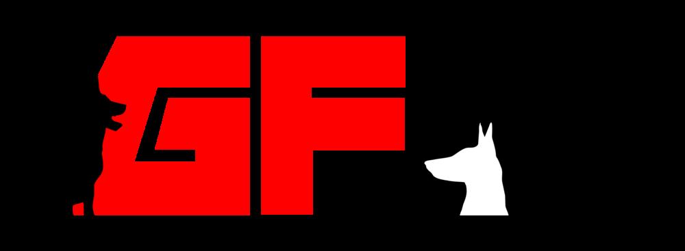 GFK9 Logo Light