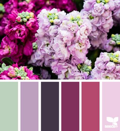 June Colors