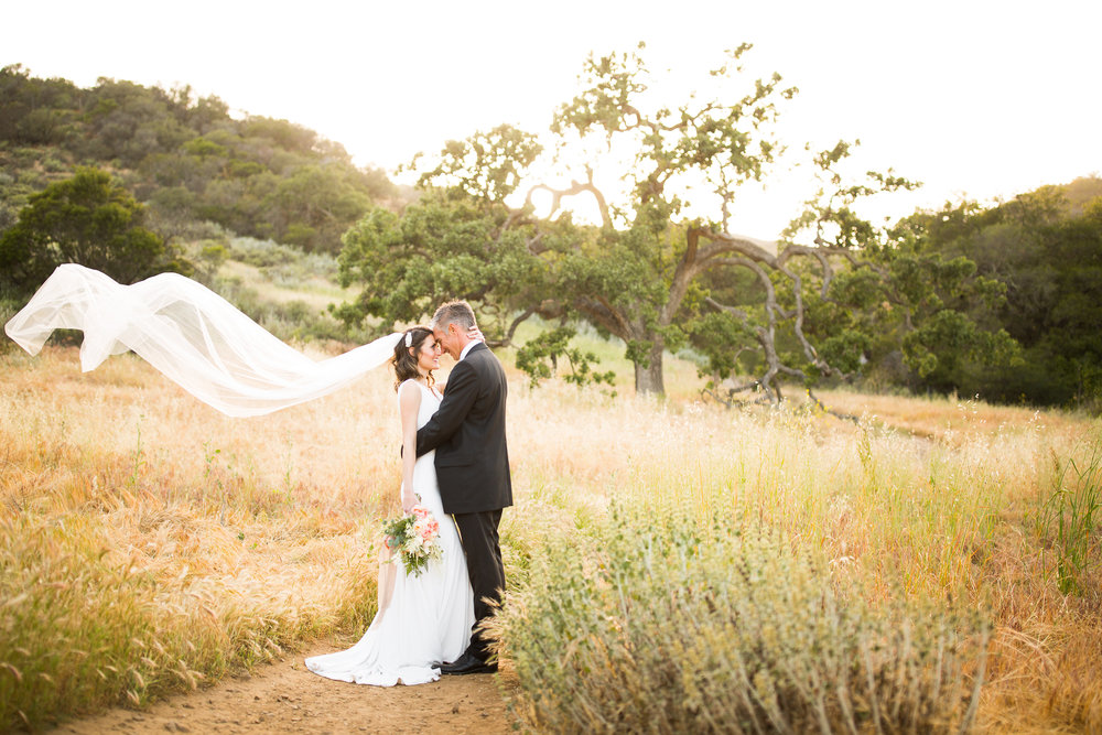 thousand_oaks_wedding_photos-15.jpg