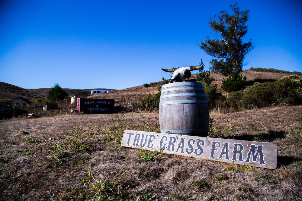 True Grass Farms