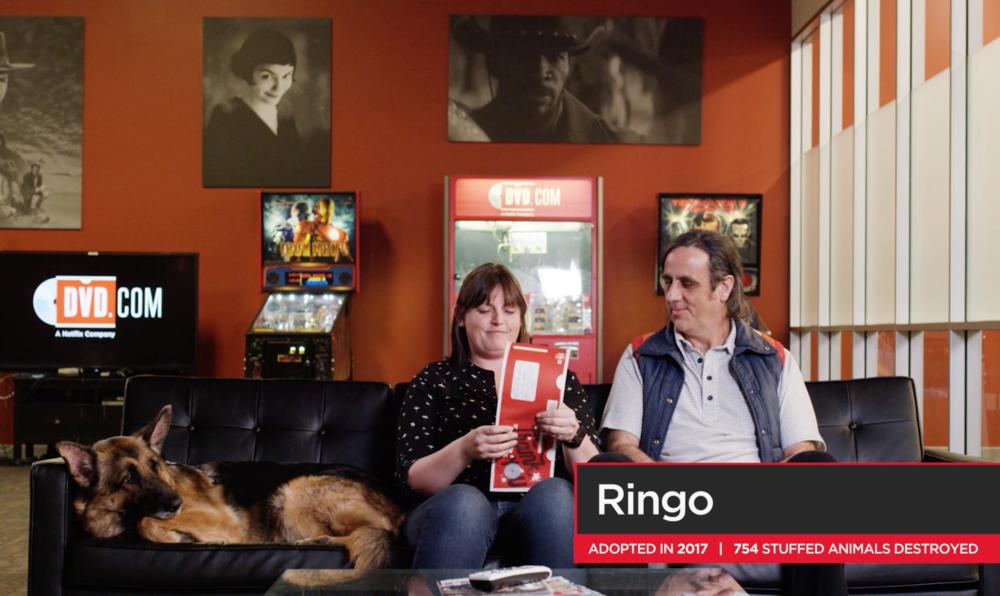 Ringo #DVD20
