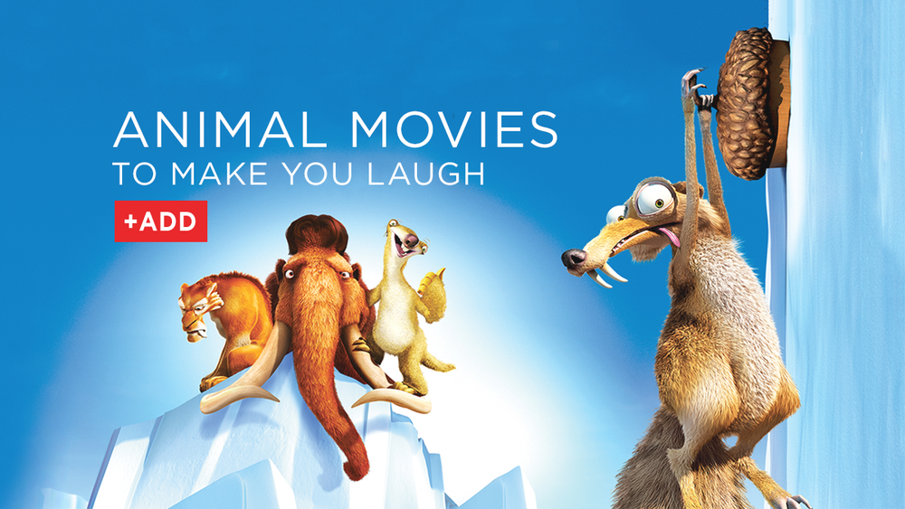 Rent movies about pets and animals from DVD Netflix