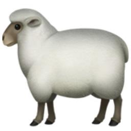 ewe.png