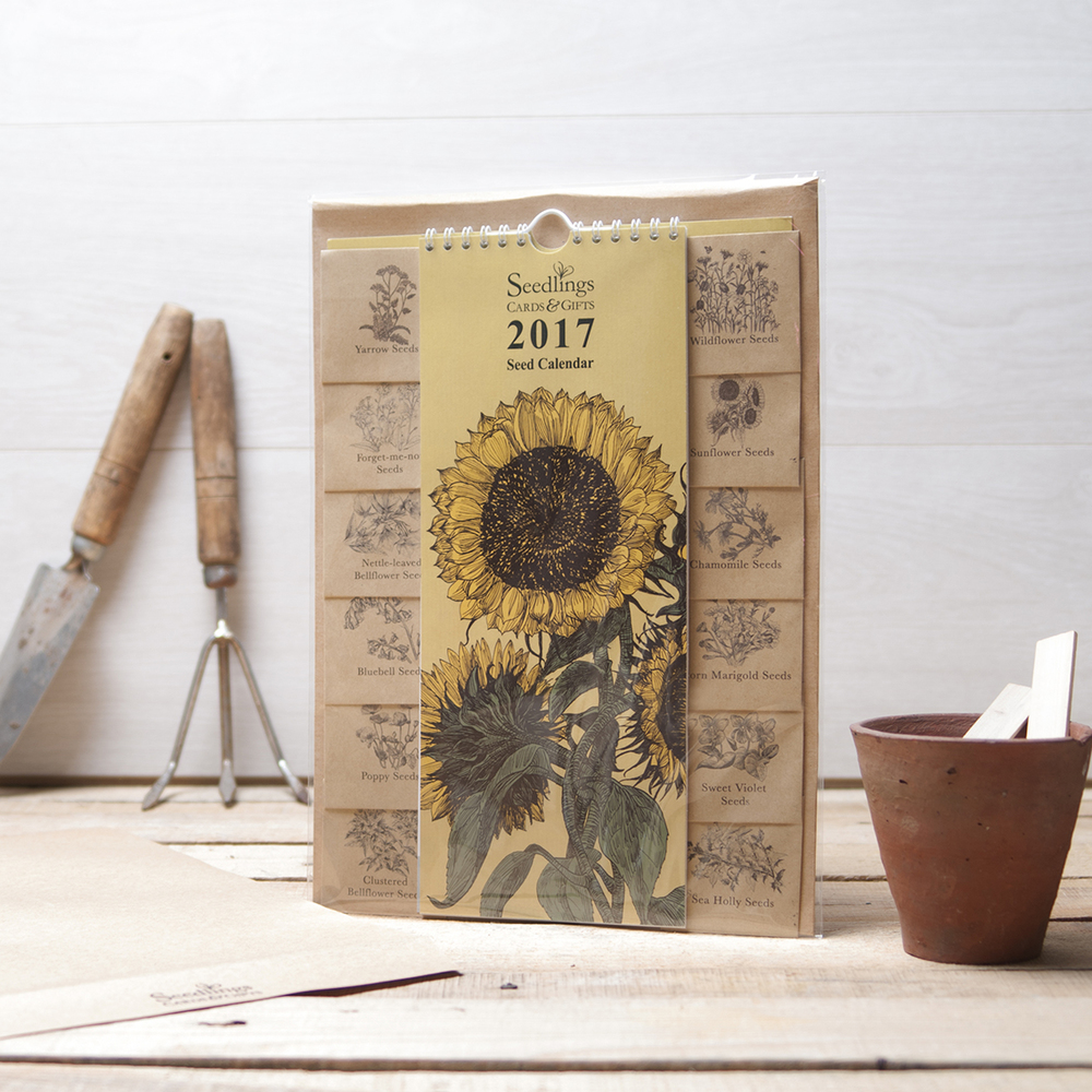 cello wrapped calendar.jpg