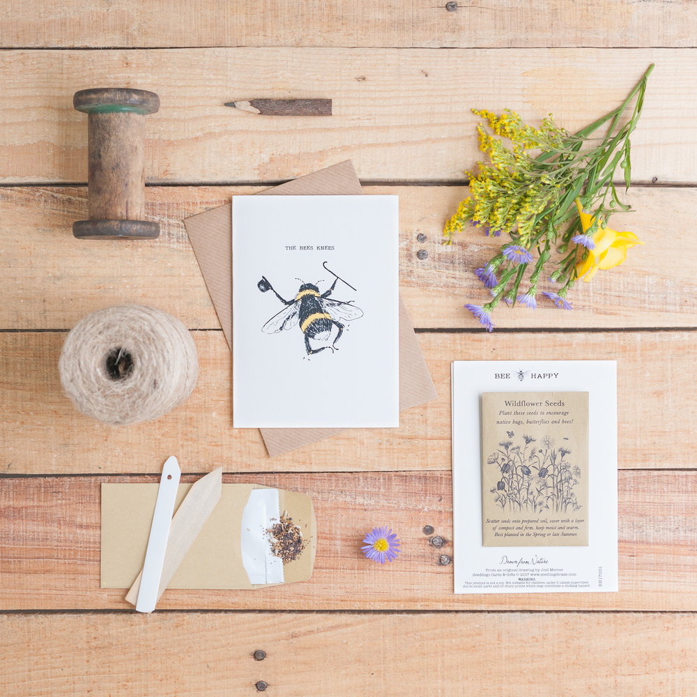 The Bee's Knees Seed card with Wildflower Seeds £4.95