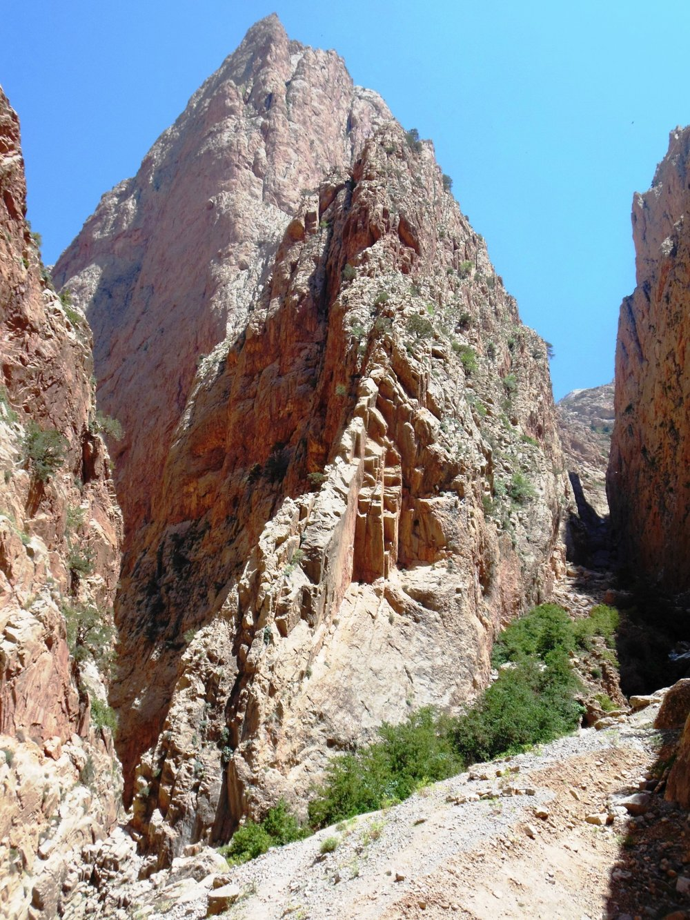 The location of the main Taghia Springs and slot canyon.
