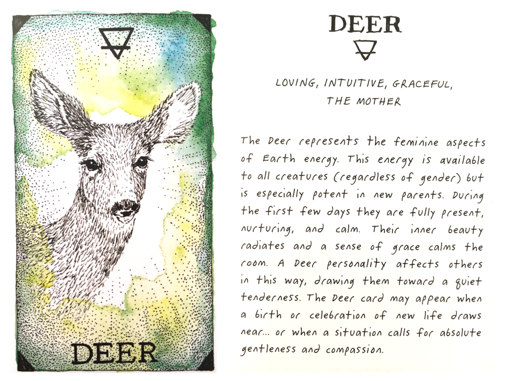 deer-crop.png