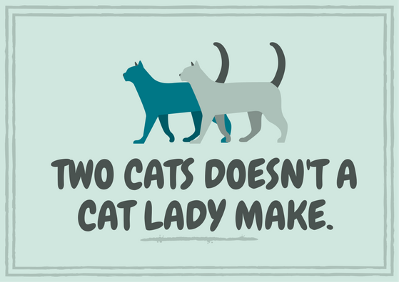 two cats doesn't a cat lady make..png