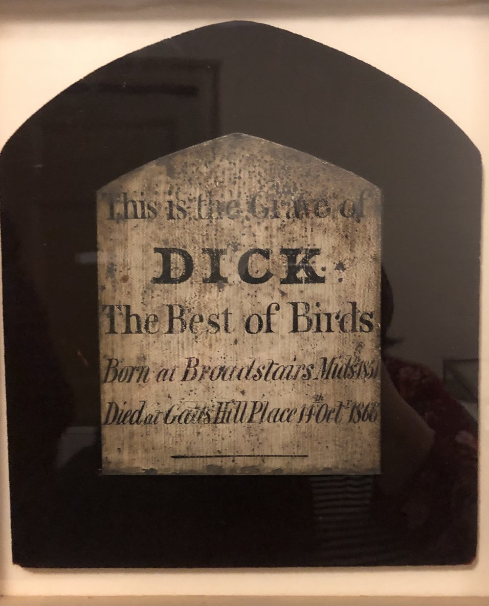 Grip, Dickens' pet raven was not the only family bird. This headstone, for Dick-the family canary, was gifted to the Free Library. It was originally at the family home, Gads Hill.
