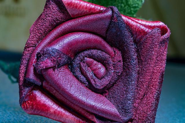 """Karen Borter """"Flower Power"""" CC"""
