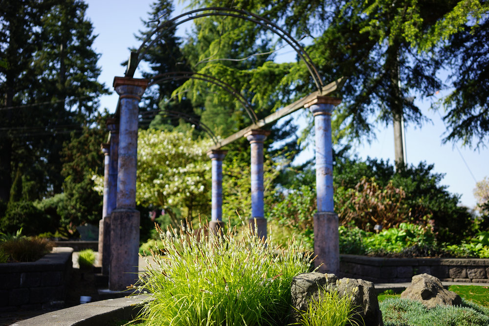 Want An In Depth History Of The Evergreen Arboretum? Watch The Video Below.