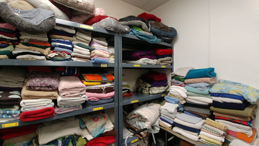 Getting rid of some towels because you watched  Tidying Up  on Netflix? Consider dropping them off at the shelter instead of the thrift store // Christopher Bragg
