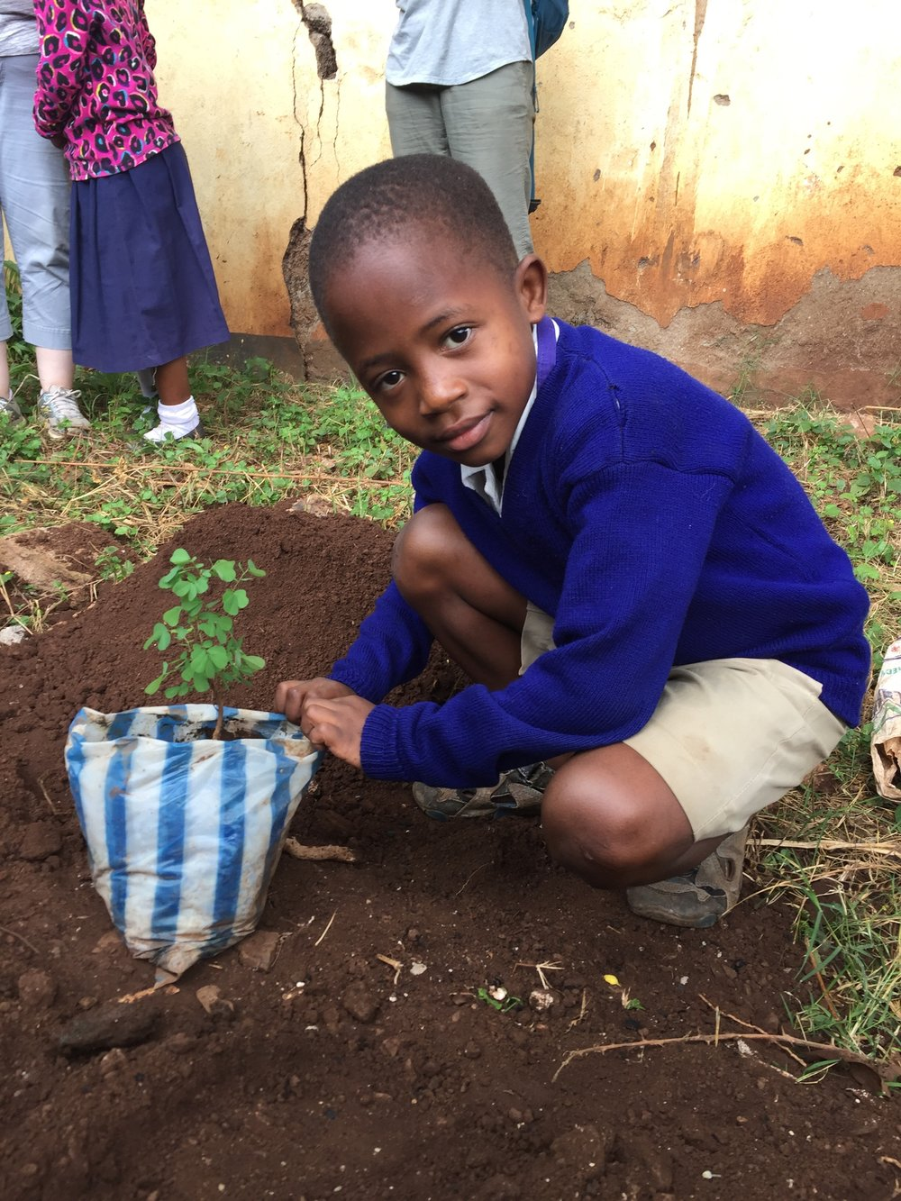 2 Mpingo Tree Planting at Majengo Primary School .jpg
