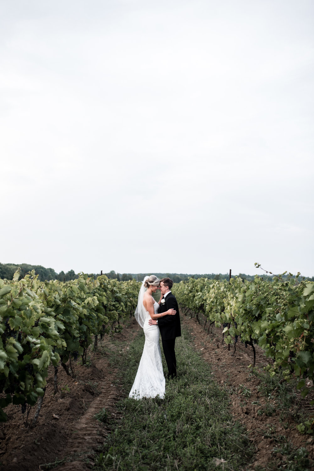 toronto-willow-spring-winery-wedding-photographer-65