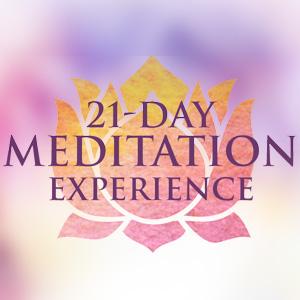 21 Day Meditation Experience