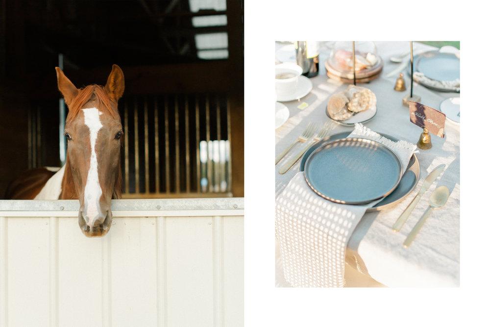 An Equestrian Editorial 05.jpg