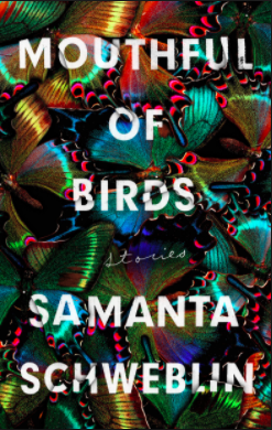 Mouthful of Birds, Samanta Schweblin.png