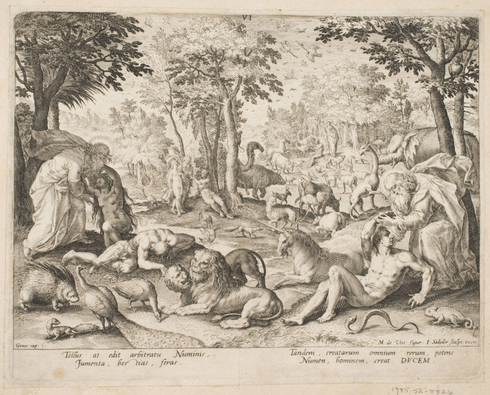 The Creation of Adam and Eve  , 1585, by Jan Sadeler I, Flemish from the  Philadelphia Museum of Art