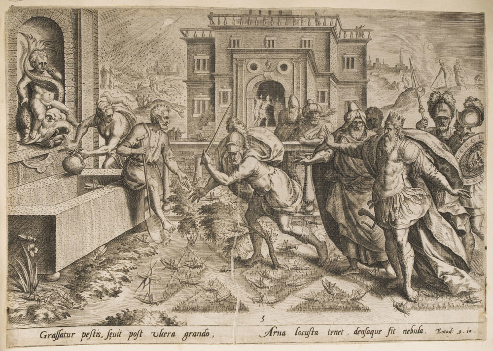 The Plague of Locusts  , 1585, by Jan Sadeler I, Flemish, from the  Philadelphia Museum of Art