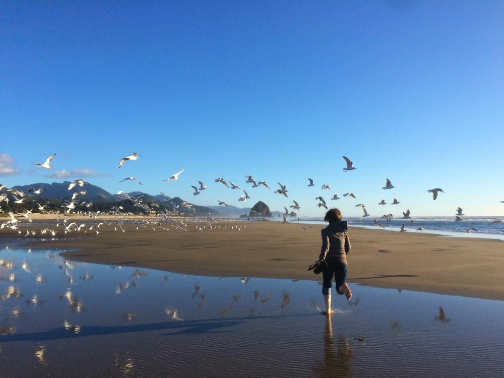 Running through the birds (Cannon Beach, OR)