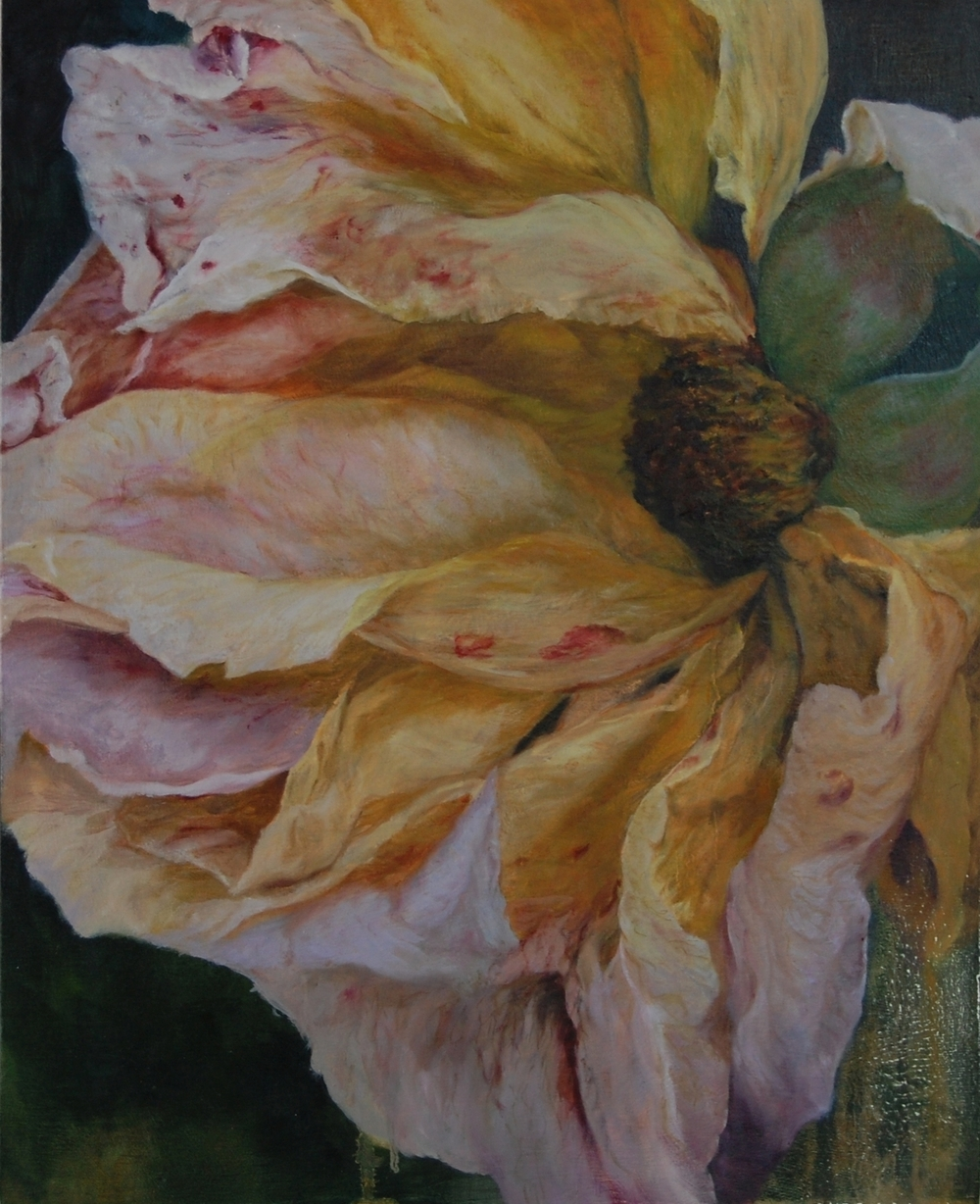 Last Rose , 2010 Oil on Board  44 x 36cm