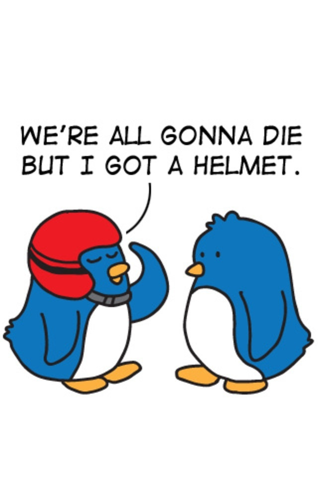 birds-helmet-gonna-die