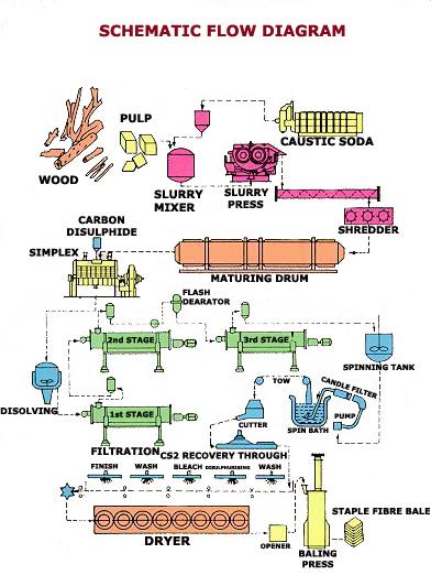 Rayon Processing