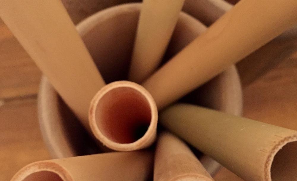 Bamboo Straws -