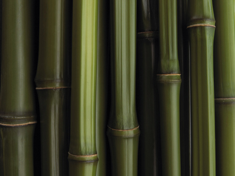 MISC BAMBOO PRODUCTS -