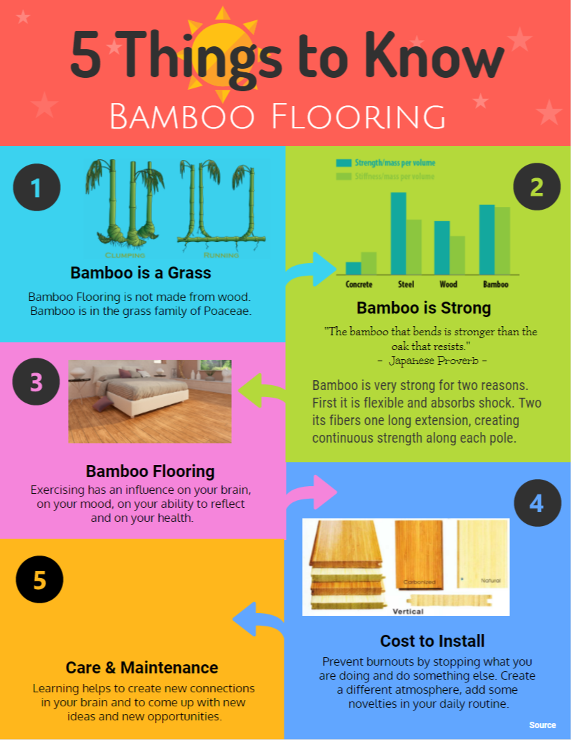 Things to Know Bamboo Flooring Infographic