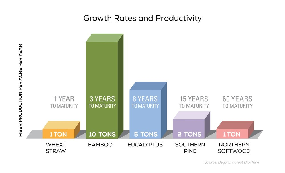 Growth-Rates-and-Productivity.jpg