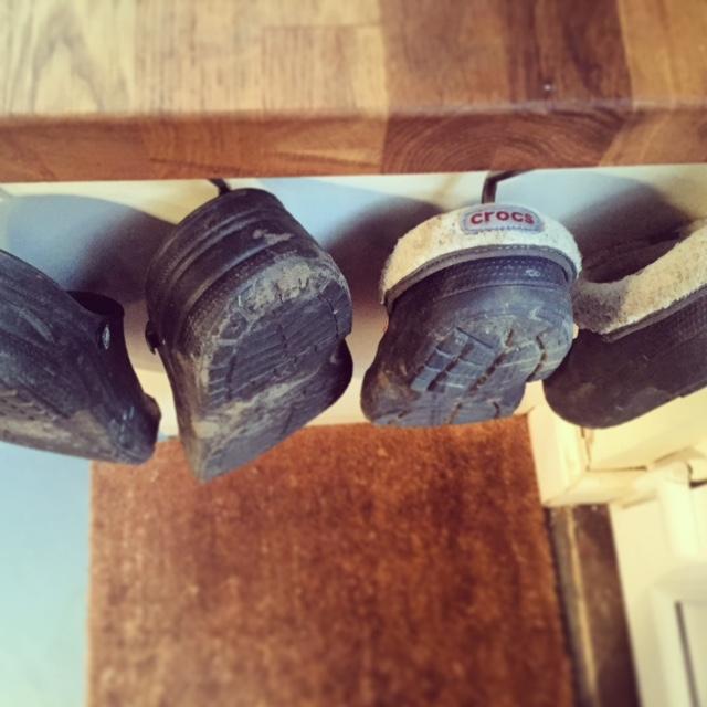 shoe-hooks