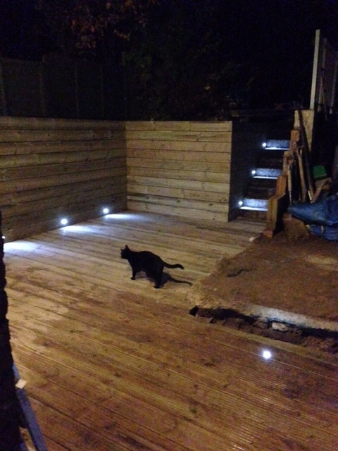 mog-on-decking.JPG