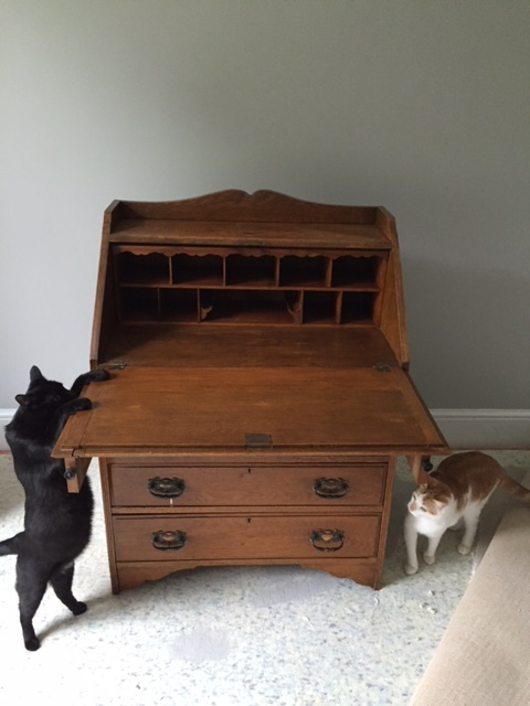 Take your piece of furniture... (the cats decided to model the 'before' photo).