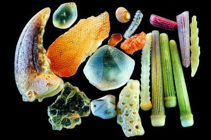sand-magnified-1-dr-gary-greenberg.jpg