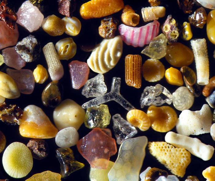 sand-magnified-4-dr-gary-greenberg.jpg