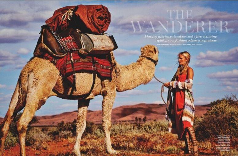 the wanderer-3-10-15-.JPG