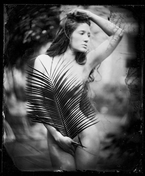 Taryn Andreatta Nude Photos 17