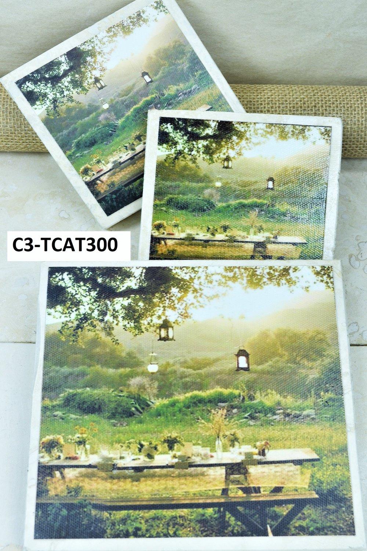 C3-TCAT300-D-txt.jpg