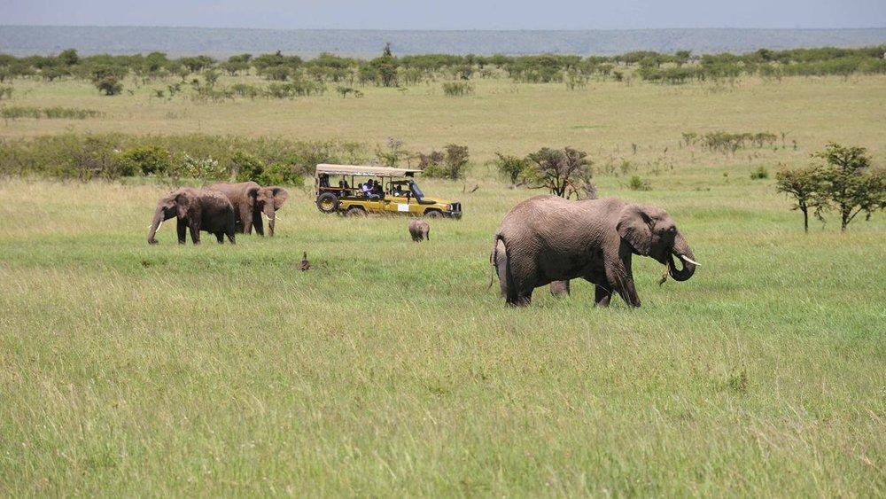 Image: Olare Mara Kempinski Masai Mara in Kenya