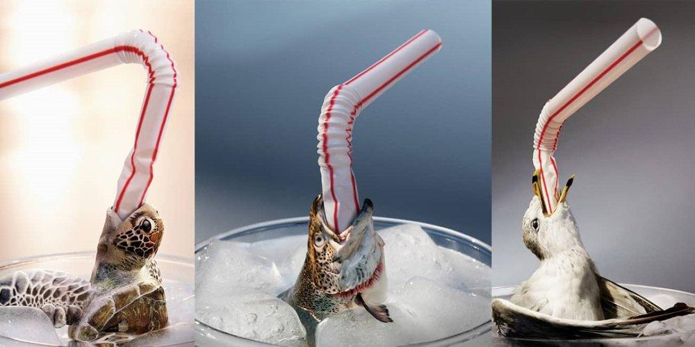 Greenpeace ban straws campaign (1).jpg