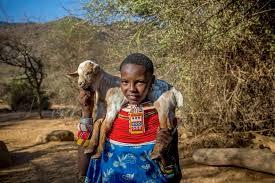My Africa documentary elephant rescue-2.jpg