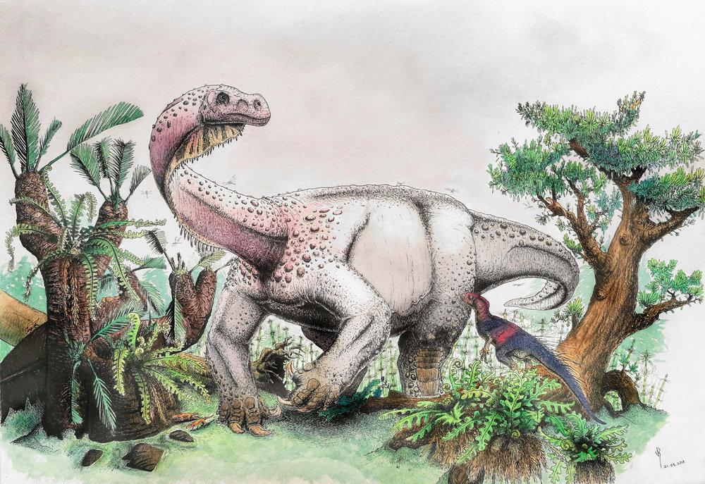 The Highland Giant : Artist Viktor Radermacher's reconstuction of what Ledumahadi mafube may have looked like. Another South African dinosaur, Heterodontosaurus tucki, watches in the foreground. Credit: Viktor Radermacher