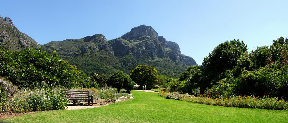 Kirstenbosch National Botanical Garden, Cape Town South Africa specializes in indigenous plants.  via Wiki