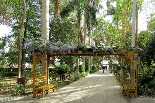 THE ASWAN BOTANICAL GARDEN, ALSO KNOWN AS KITCHENER'S ISLAND OR EL NABATAT ISLAND, IS EGYPT'S WORLD CLASS BOTANICAL GARDEN THAT IS LOCATED ON AN ISLAND IN THE NILE RIVER AT ASWAN.  VIA