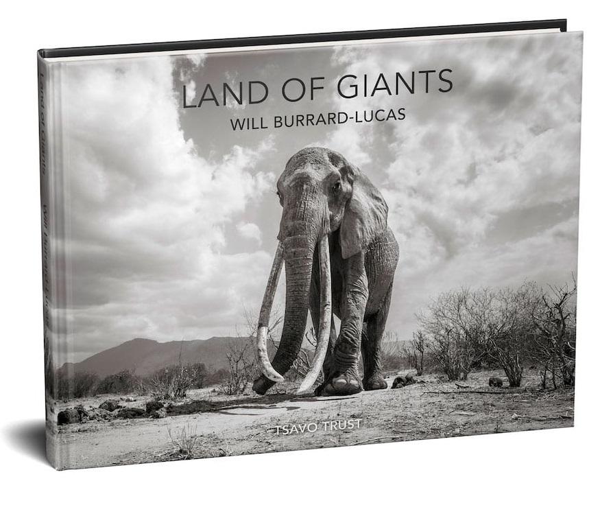 will-burrard-lucas-elephant-queen-land-of-giants-book- (10).jpg