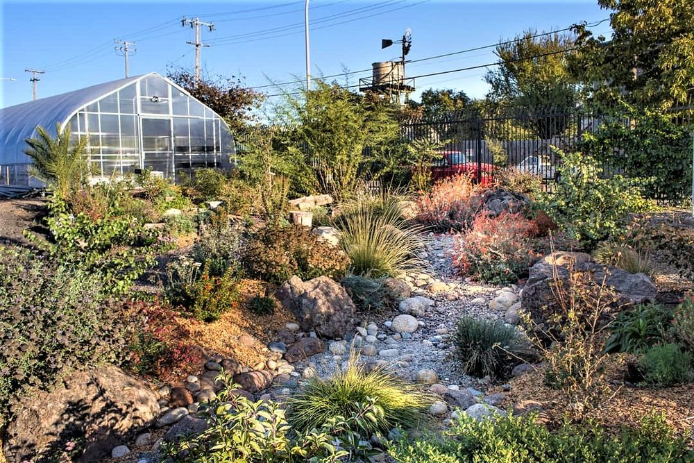 Berkeley's  new urban agriculture ordinance encourages residents to grow their own food . Urban Adamah in Berkeley is an educational farm and community center. Photo:  Urban Adamah
